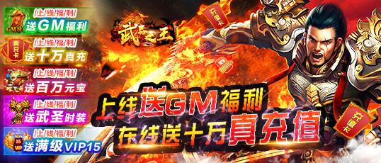 武器之王(GM送10w真充)